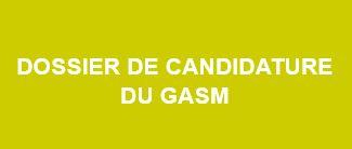 Dossier de candidature DU GASM